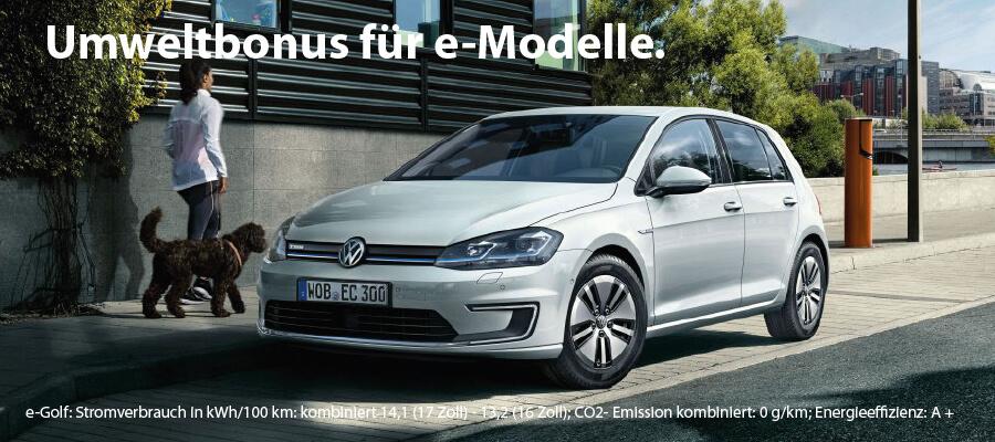 Umweltbonus e-Fahrzeuge